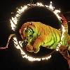 Цирки в Оренбурге